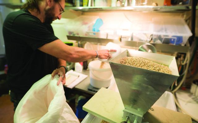 Brasserie d'Amblise