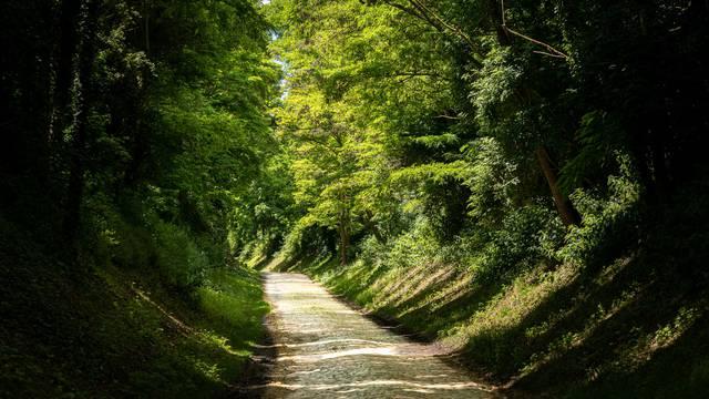 Balades et randonnées dans le Valenciennois